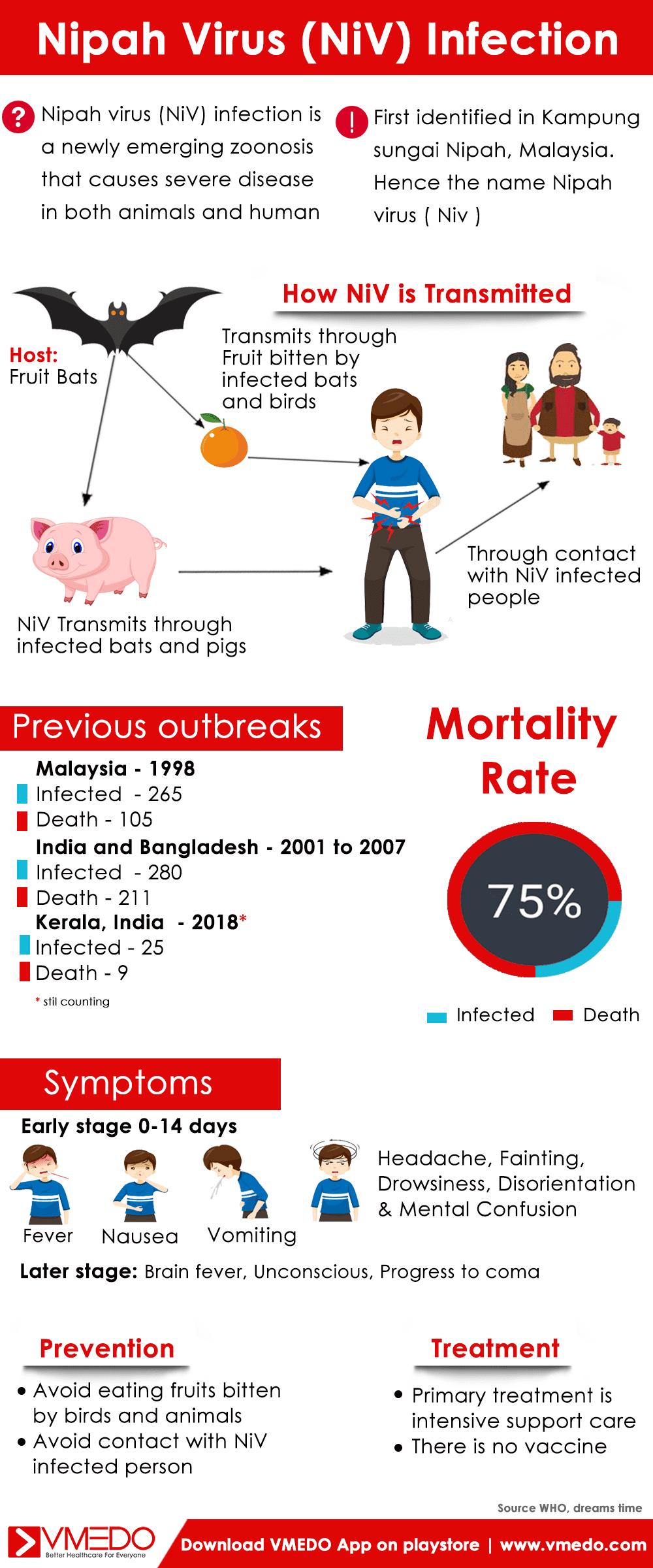 Nipah virus infographics
