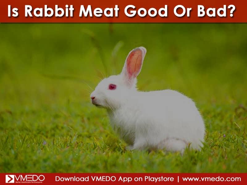 rabit_meat